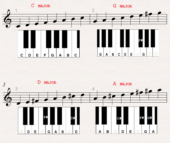 A chord chard of a C major, G major, D major and A major scales.