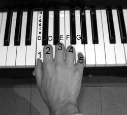The C position on the piano. The thumb is placed on middle C, 2nd finger on D and the rest repectively.