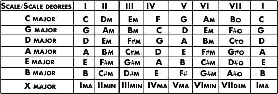 Major scale Chord degrees.