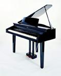 Petite Piano