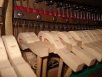 Inside the piano - Hammers and Strings
